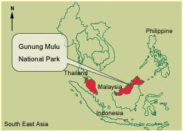 old mulupark web_map_of_mulu